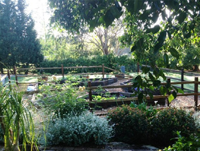 Guestlands Gardens